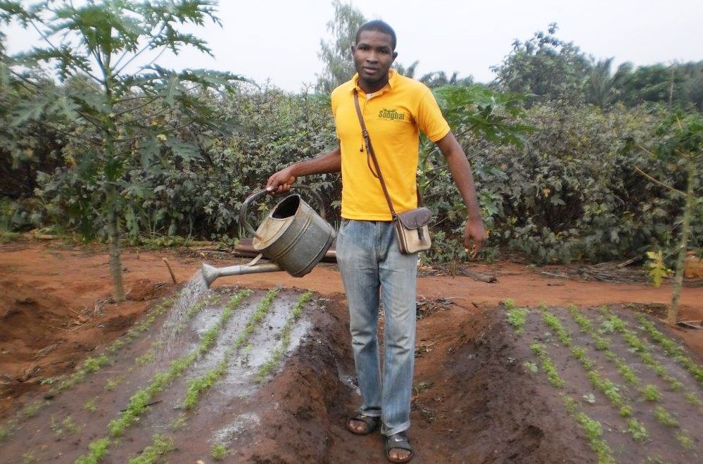 Young farmers like Olawale Ojo in Nigeria still struggle to get access to much needed credit facilities. Yet young commercial farmers are needed to help Africa achieve food security and realise its agriculture potential │© ONE