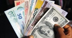 The CBN says that the blocked IMTOs are adding to the dollar scarcity and, therefore, the sharp depreciation of the Naira, by not remitting needed foreign currencies to the financial system │© PNN