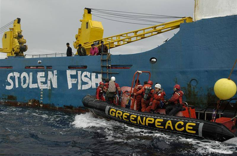 Greenpeace activists paint 'Stolen Fish' on the hull of the illegal Chinese pirate vessel Lian Run 14, arrested for fishing illegally inside the Guinean Exclusive Economy Zone EEZ. Rising global demand for fish has made African waters a magnet for fleets from around the world. European trawlers remain the primary foreign presence, but fleets from China, the Philippines, Russia, South Korea and Taiwan have also expanded in recent years / © Greenpeace Greenpeace and the Environmental Justice Foundation have been following the Binar 4 for the last six days from West Africa to Europe and will continue to 'police' the vessel until the Spanish authorities confiscate its illegal cargo.